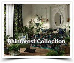 iliv Rainforest
